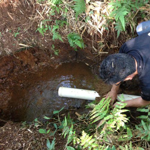 Colocação do dreno